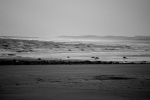 Links In Winter7 by lichtie