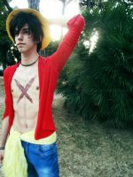 Luffy - One Piece by DarkyLeon