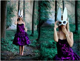 I felt into a rabbit hole by koszal