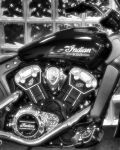 Indian Scout Version 2 by Rayvenstar