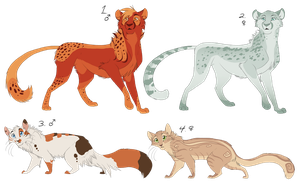 Cheetah and Cat Adopts by Nightrizer