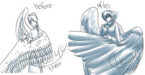 Before and after Guardian Raven doodle by OokamiReiben96