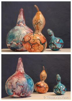 Gourds 1,2,3 by TracieMacVean