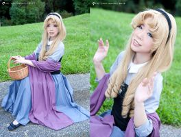 Briar Rose by KrishCreate
