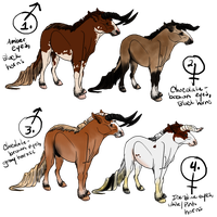 Unnamed Species Point Adopts by xDoglate