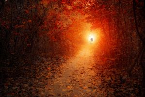 two of us by ildiko-neer