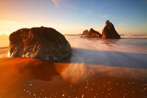 Bandon by coulombic
