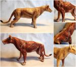 Lion Muscle Study Sculpture by LuxDani