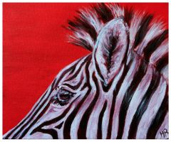 Zebra by Helenr251