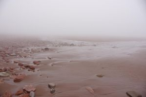 Foggy Beach by dseomn