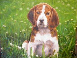 Beagle puppy by SlackerBabbath