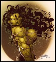 She Hulk 3 by wagnerf