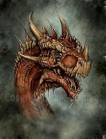 Red Dragon by Maik-Schmidt