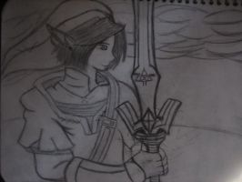 Another Link by elementalfury89