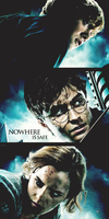 Harry Potter Ron Hermione by Toxic-Sway