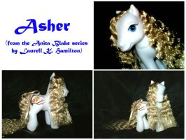 MLP Custom : Asher by marienoire