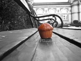 The lonely muffin by PurePhotography37