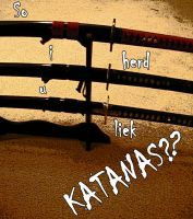 So i herd u liek katanas?? by WarriorofHeaven