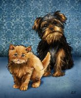 Pet Portraits by CoolSurface