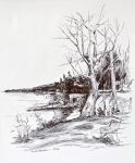 Ink drawing looking east by TomKilbane