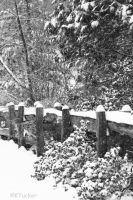 Fence in the snow by KrazyKim