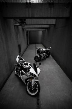 Yamaha R1 _4_ by schwepes