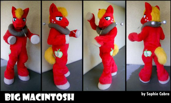 MLP FiM Big Macintosh Cosplay by SpainFischer