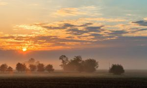 Misty Morning by sztewe