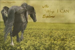 I Can by oceancoralgraphics