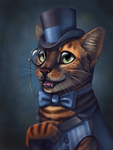 The Fanciest Of Cats by DimeSpin