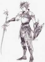 FFI - Warrior of Light by Nica-vb