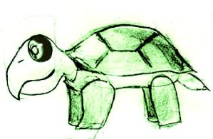 Turtle by Mangaman9999