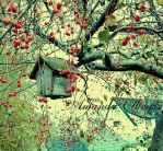 birdhouse and fall by firstkissfeelings