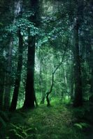 fantasy woodland bg 1 by joannastar-stock