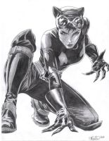 Catwoman by Nicolemarielenz