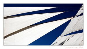White on Blue by souk1501