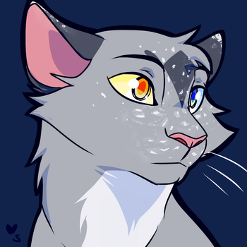 Silvernight by meow286