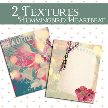 Textures Hummingbird Heartbeat by Cassie-flavor-love