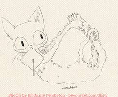 Yoga Cat Sketch by beyourpet