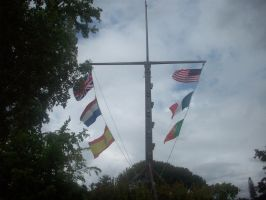 ALL flags by andyburgos