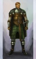 westmen armor concept 2 by wanderer-arts