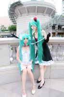 Vocaloid - Polyphonic Branch by Maggiesisi