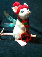 fairy mouse or maybe its a rat by AmandaKathryn