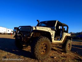 Rubicon Wheeler by Swanee3