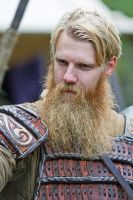 Epic Viking Beard by attomanen