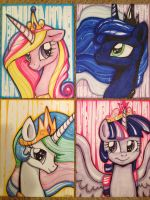Princess Portraits by frostykat13