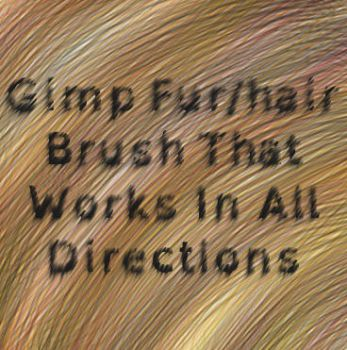 Gimp Fur/hair Brush That Works In All Directions by horse14t