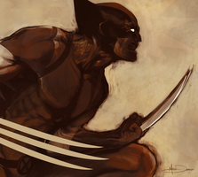 The Wolverine by MattDeMino