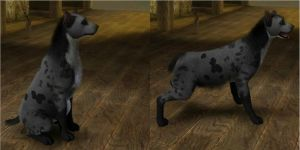 TLK Hyena for the sims 3 by Kaosah