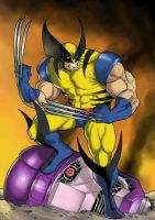 The Wolverine by Ronniesolano